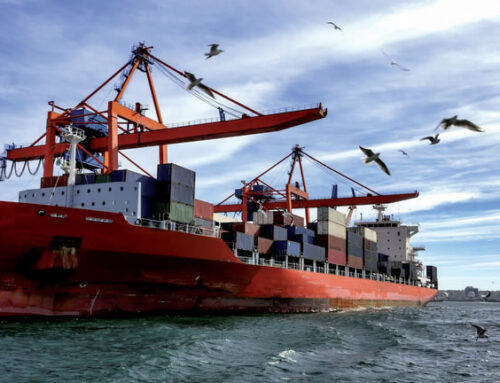 I trasporti marittimi: professionalità e sicurezza anche sulle navi